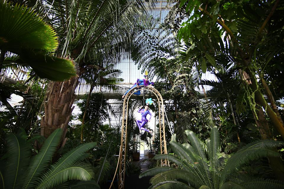KEW, ENGLAND - MAY 10:  Aerialists perform in the Palm House at the Royal Botanical Gardens on May 10, 2011 in Kew, England. (Photo by Peter Macdiarmid/Getty Images)