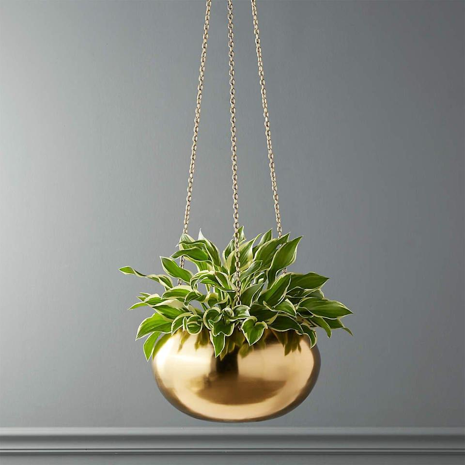 Hanging Gold Planter from CB2