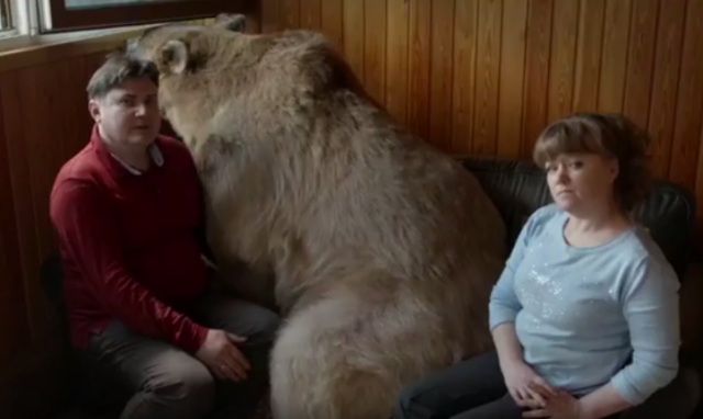 Yuri and Svetlana Jilly chillin' on the couch with their pet bear, Stepan. (Photo: Channel 4)