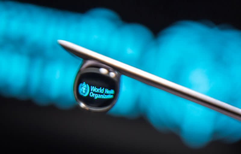 FILE PHOTO: World Health Organization logo is reflected in a drop on a syringe needle in this illustration photo