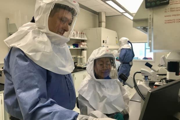 Researchers work on a COVID-19 vaccine at Saskatoon's Vaccine and Infectious Disease Organization (VIDO) lab. (Bonnie Allen/CBC - image credit)