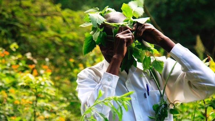 The spiritual leader wears a crown of local plants at a river confluence ritual