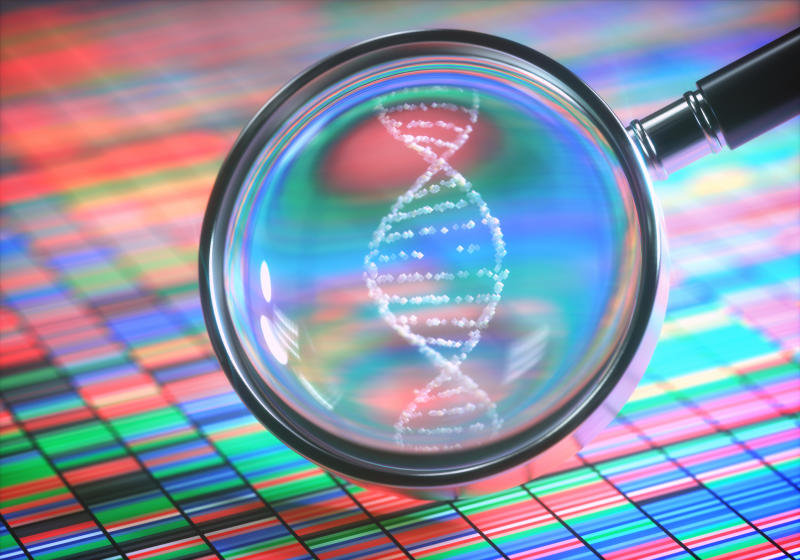 Magnifying glass with DNA helix magnified and DNA color chart underneath.