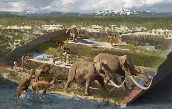 The location of the new excavations was the shore of a wetland when the footprints were made between 21,000 and 23,000 years ago. (Karen Carr)
