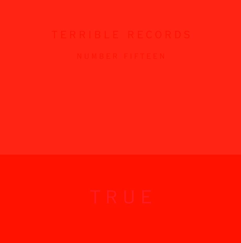 """This CD cover image provided by Terrible Records shows the latest release by Solange, """"True EP."""" The release is out Tuesday, Nov. 27, 2012. (AP Photo/Terrible Records)"""