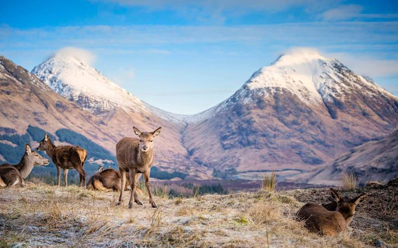 The Highlands - getty