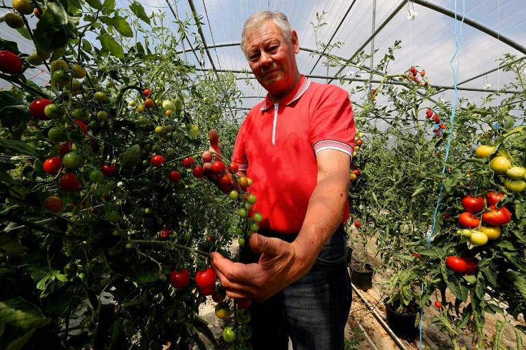 Tomato farmer Jean-Claude Terlet has blamed Monsanto's flagship weedkiller Round Up for causing his prostate cancer