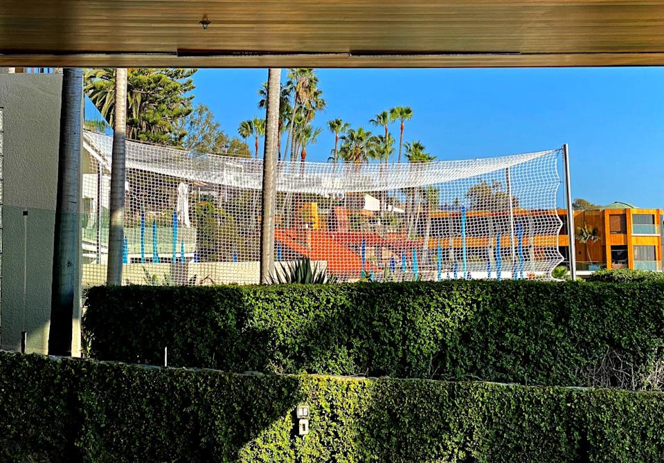 The view from Mark Towfiq's pool deck includes the Dale Chilhuly glass lawn sculpture with netting.