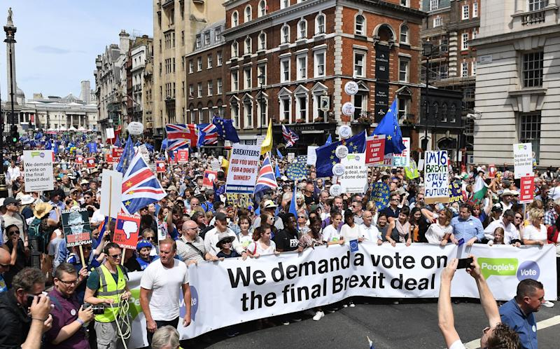 Organisers said 100,000 people had attended the People's Vote March in central London: EPA