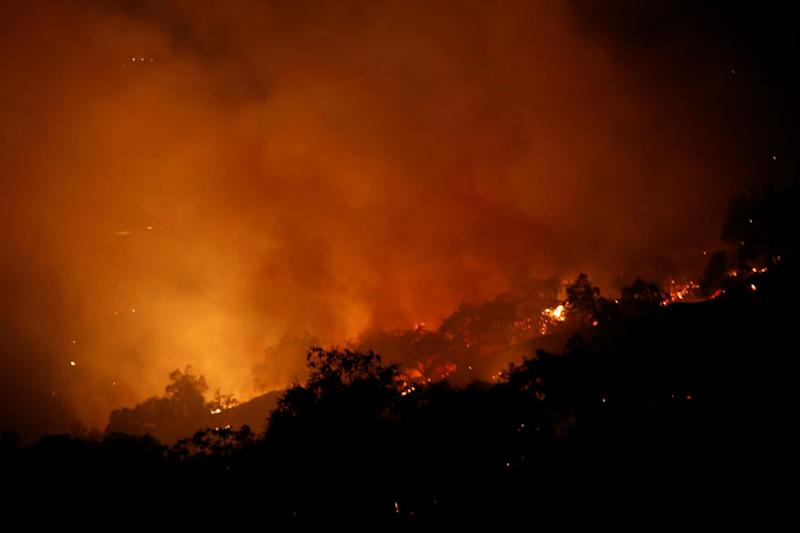 Amid Row with Malaysia Over Forest Fires, Indonesia Seals off 30 Companies