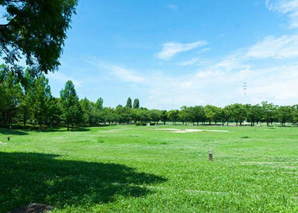 ▲The spacious grassy area next to the barbecue area is also nice.