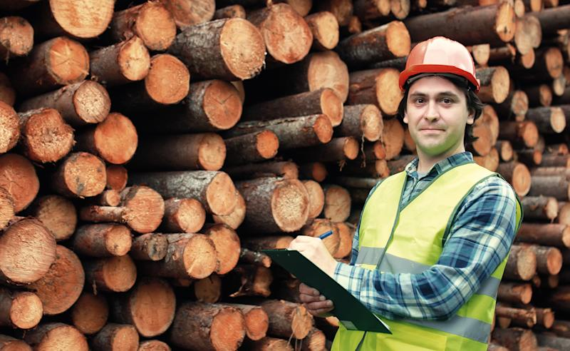 A man standing with a notebook in front of a pile of felled trees