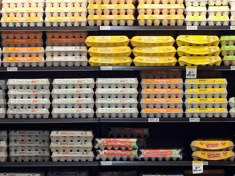 Egg labels website too confusing: Choice