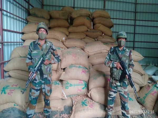 Seized 240 bags of areca nuts