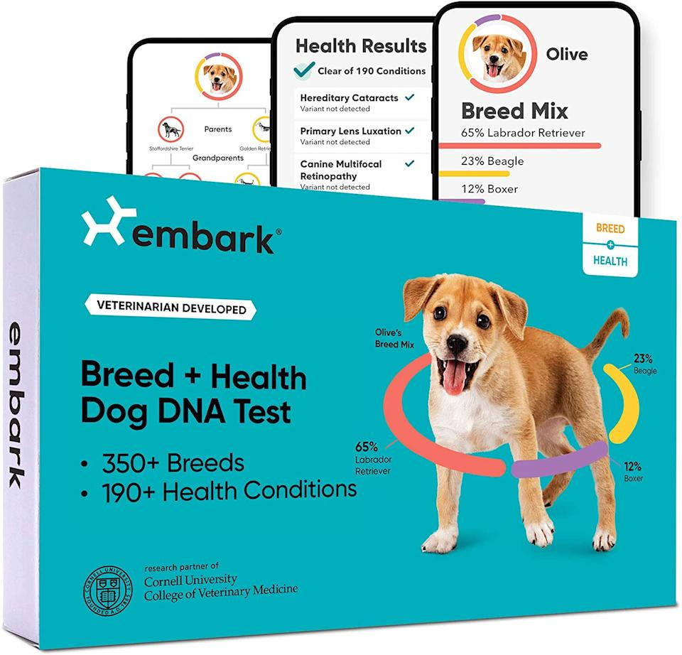 This DNA test checks for over 350 breeds. (Photo: Amazon)