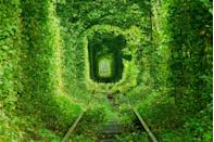 <p>Abandoned tracks lead into the Tunnel of Love near Klevan, Ukraine // Date unknown</p>