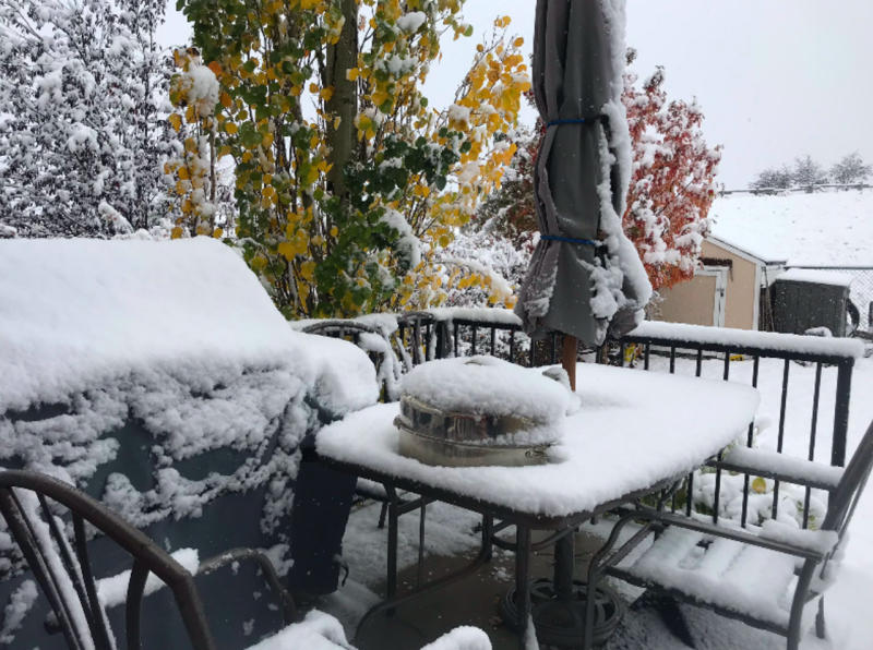 Snow interrupts Thanksgiving festivities in Calgary and parts of B.C.