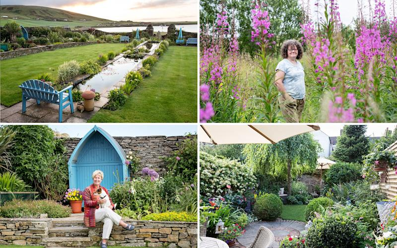 Readers can vote for the People's Choice Award winner three categories: small space, wildlife friendly and challenging plot - BBC Gardener's World Magazine
