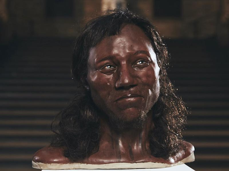 Facial reconstruction of Cheddar Man, who had blue eyes, dark skin and dark, curly hair. (Natural History Museum)
