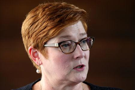 Australia's Foreign Minister Marise Payne speaks during a news conference at Australian Embassy in Bangkok, Thailand, January 10, 2019. REUTERS/Athit Perawongmetha