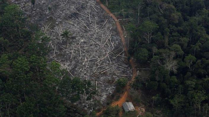 An aerial view of a deforested plot of the Amazon at the Bom Futuro National Forest in Porto Velho, Rondonia State, Brazil, September 3, 2015