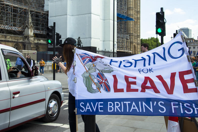 Pro leave campaigners continue their daily protest opposite the Houses of Parliament in London last month (Picture: PA)