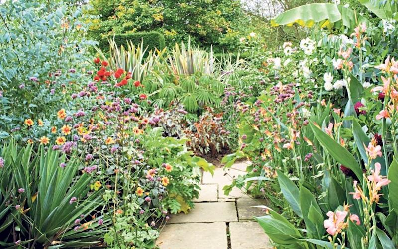 Totally tropical: The Exotic Garden, Great Dixter, shows how to do creative tropical planting - Alamy