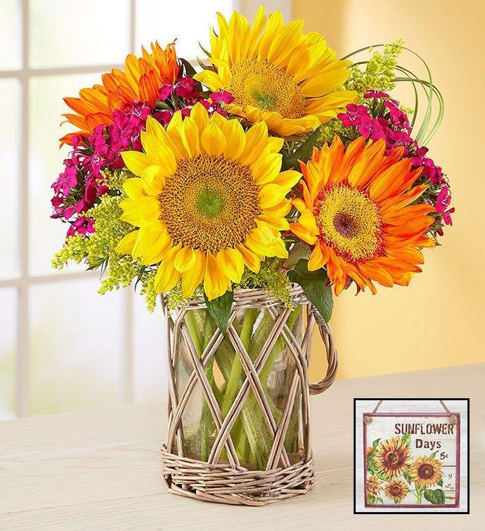 "<p><strong>1-800-Flowers </strong></p><p>1800flowers.com</p><p><strong>$44.99</strong></p><p><a href=""https://go.redirectingat.com?id=74968X1596630&url=https%3A%2F%2Fwww.1800flowers.com%2Fflowers%2Fwarm-sunset-bouquet-100589&sref=https%3A%2F%2Fwww.goodhousekeeping.com%2Fholidays%2Fmothers-day%2Fg5187%2Fmothers-day-flowers%2F"" rel=""nofollow noopener"" target=""_blank"" data-ylk=""slk:Shop Now"" class=""link rapid-noclick-resp"">Shop Now</a></p><p>This summer-ready bouquet, complete with orange and yellow sunflowers, pink Gypsy dianthus, bear grass, and yellow solidago, will give her a taste of what's to come. </p>"