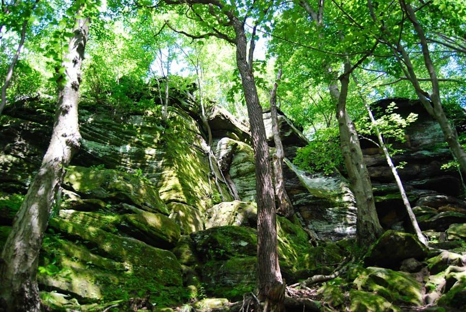 """<div class=""""inline-image__caption""""><p>""""The glowing lichen of The Ledges at Cuyahoga Valley National Park""""</p></div> <div class=""""inline-image__credit"""">Photo courtesy, Brandon Withrow</div>"""