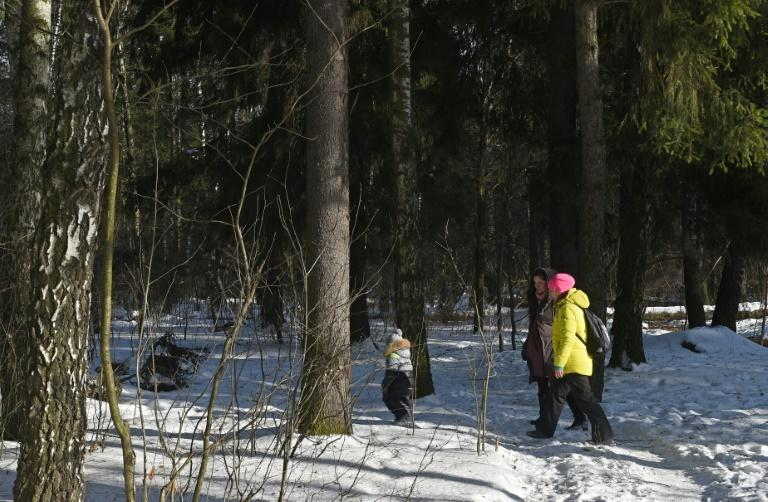 People walk through the Chelyuskinsky Wood outside Moscow