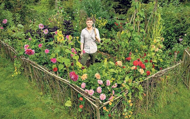 'It was hard graft to clear the site, with huge lumps of stone to dig out': Robin Lucas had this work cut out when renovating his garden - Paul Cooper
