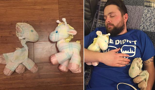 Nick Hollinger taking a nap with both Fraffys Christmas evening. (Photo: Nick Hollinger)