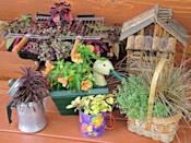 """<div class=""""caption-credit"""">Photo by: Nancy Ondra</div><div class=""""caption-title"""">Dad's Garden</div>Celebrate the guy in your life with a collection of containers that represent his favorite things. If he enjoys grilling, for instance, tuck some low-growing plants into a little hibachi, or go big by turning an old kettle grill into a mobile planter. Other fun ideas include coffeepots and mugs, animal-themed containers, toolboxes, auto accessories and sports-related items."""