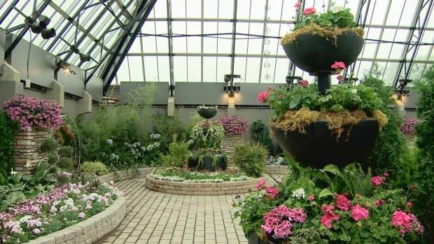 The Muttart Conservatory is home to 700 species of plants.  (Craig Ryan/ CBC - image credit)