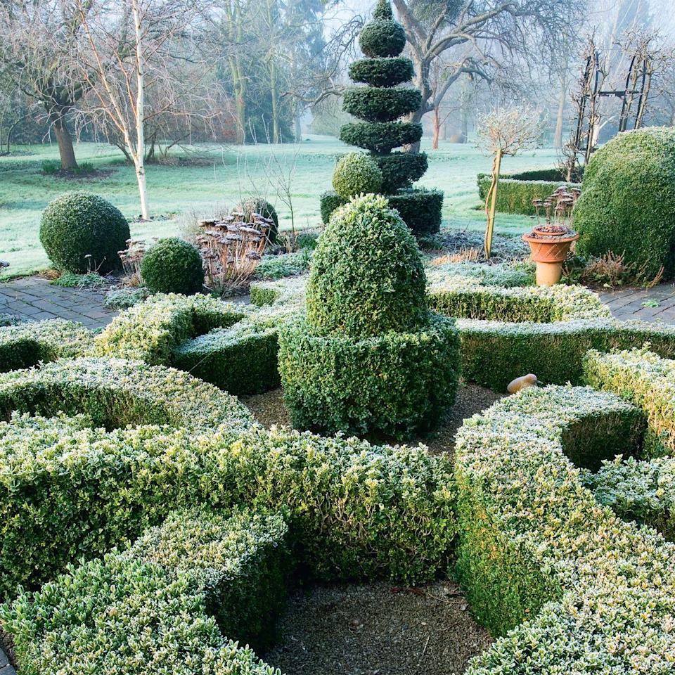 Photo credit: Glorious Gardens, by Country Living|Clive Nichols Garden Pictures