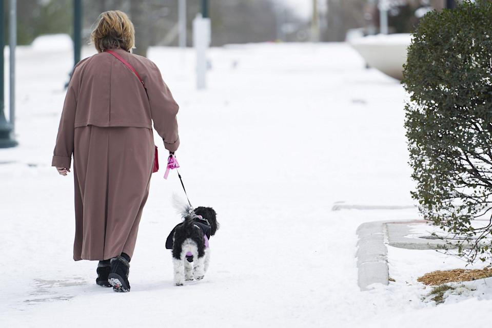 <p>A person walks a dog on snow-covered streets in McKinney, Texas, on Feb. 16.</p>