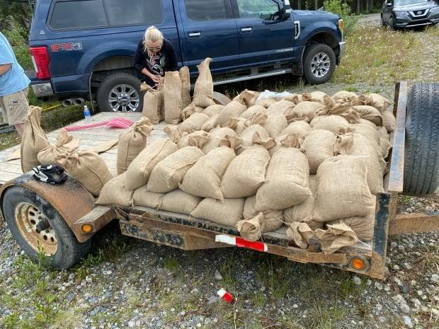 People help fill sandbags in Tagish, Yukon, on Saturday in anticipation of rising water levels at nearby lakes that could threaten some properties.  (Chris MacIntyre/CBC - image credit)