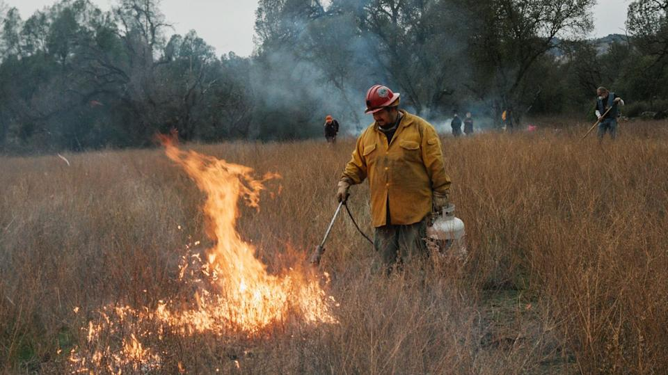 "Officials from Cal Fire and the Forest Service were present at the burn, marking a shift in the way the state's land managers are imagining fire ""fighting."" (Photo: Ed Kashi/VII)"