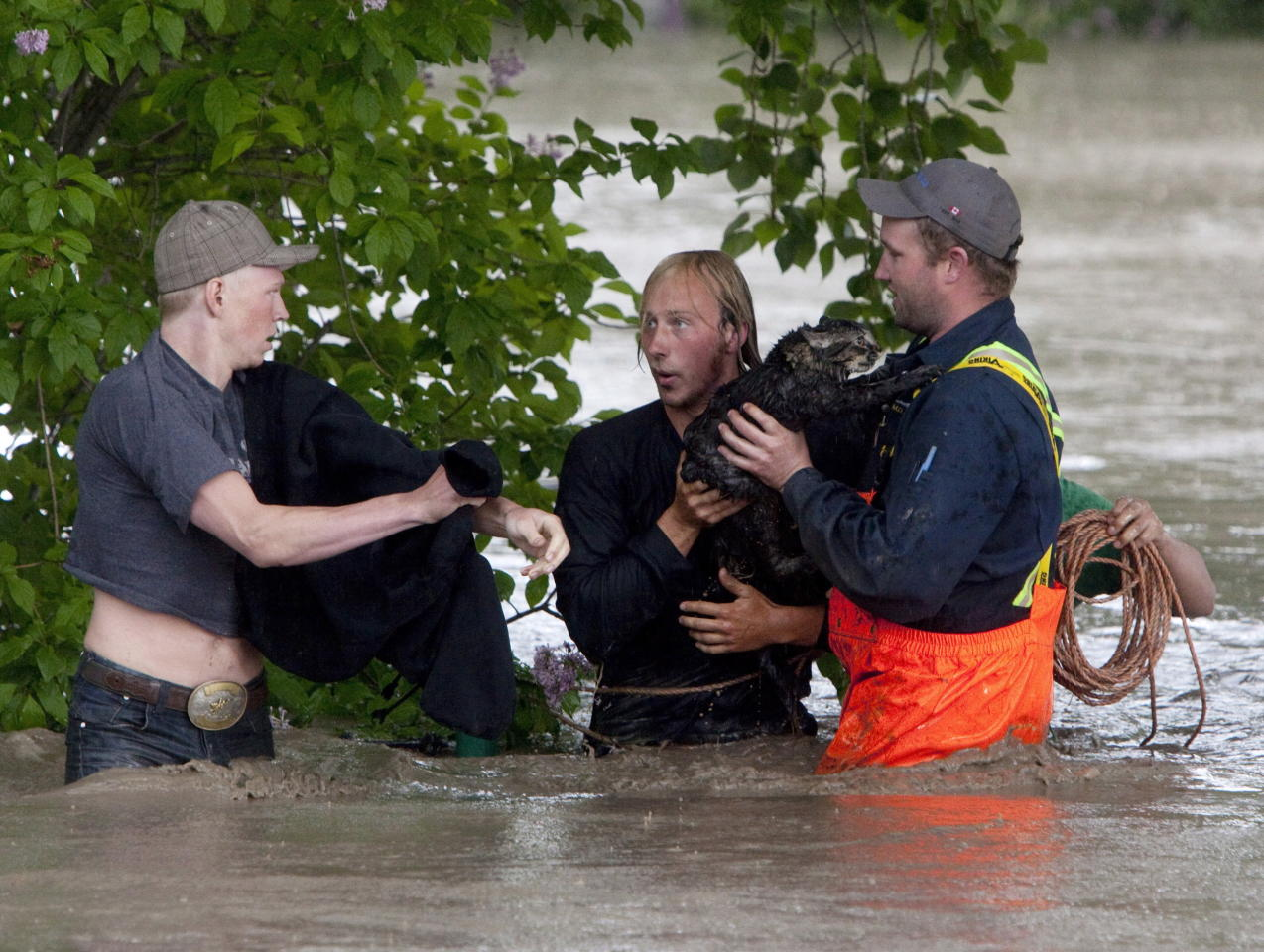 Kevan Yaets and his cat Momo are led to safety excaping his pick-up swept downstream in High River, Alta. on June 20, 2013 after the Highwood River overflowed its banks.