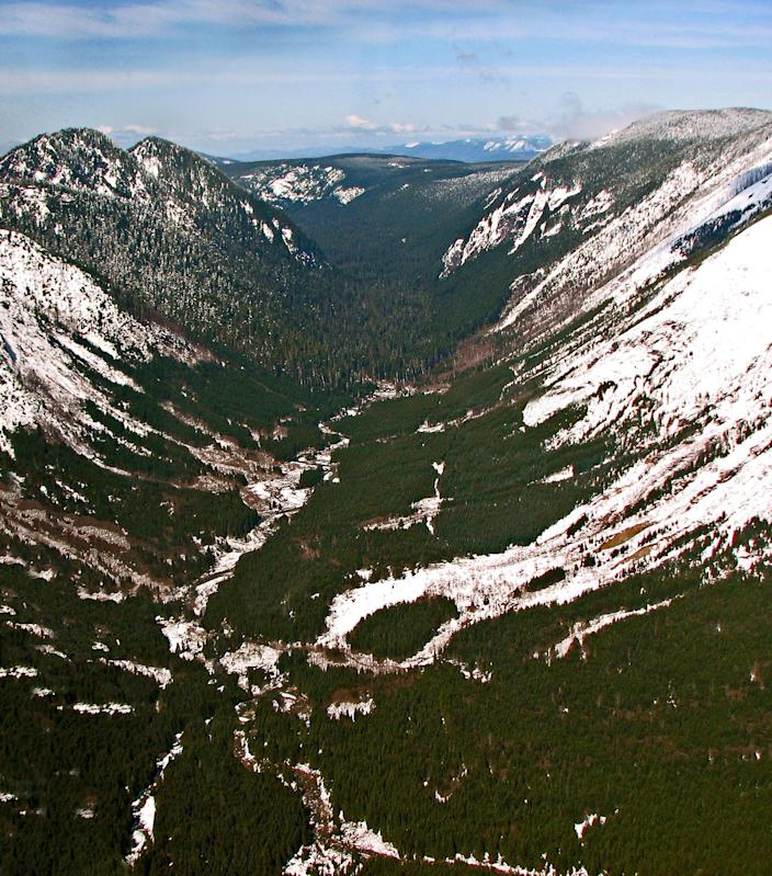 <p>Green River Valley in Washington as seen from the air. (Photo: Air Cascade Forest Conservancy) </p>