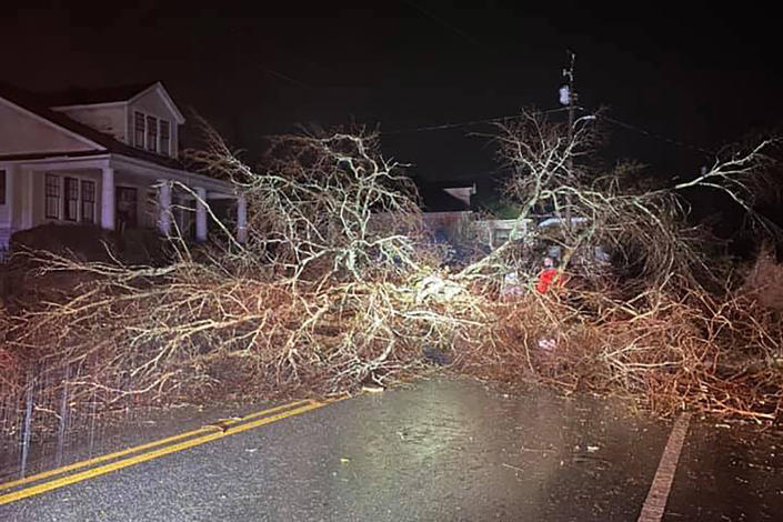 Image: A road is blocked by trees after a tornado touched down in the early morning hours causing severe damage in Newnan, Ga. (Newnan Utilities / AP)