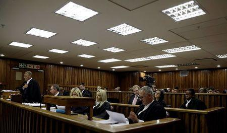 State prosecutor Gerrie Nel addresses the court during an appeal hearing brought by prosecutors against the six year jail term handed to Oscar Pistorius for the murder of his girlfriend Reeva Steenkamp in Johannesburg, South Africa, August 26, 2016. REUTERS/Themba Hadebe/Pool
