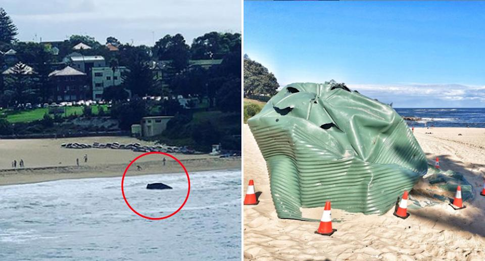 A water tank washed up on Coogee beach