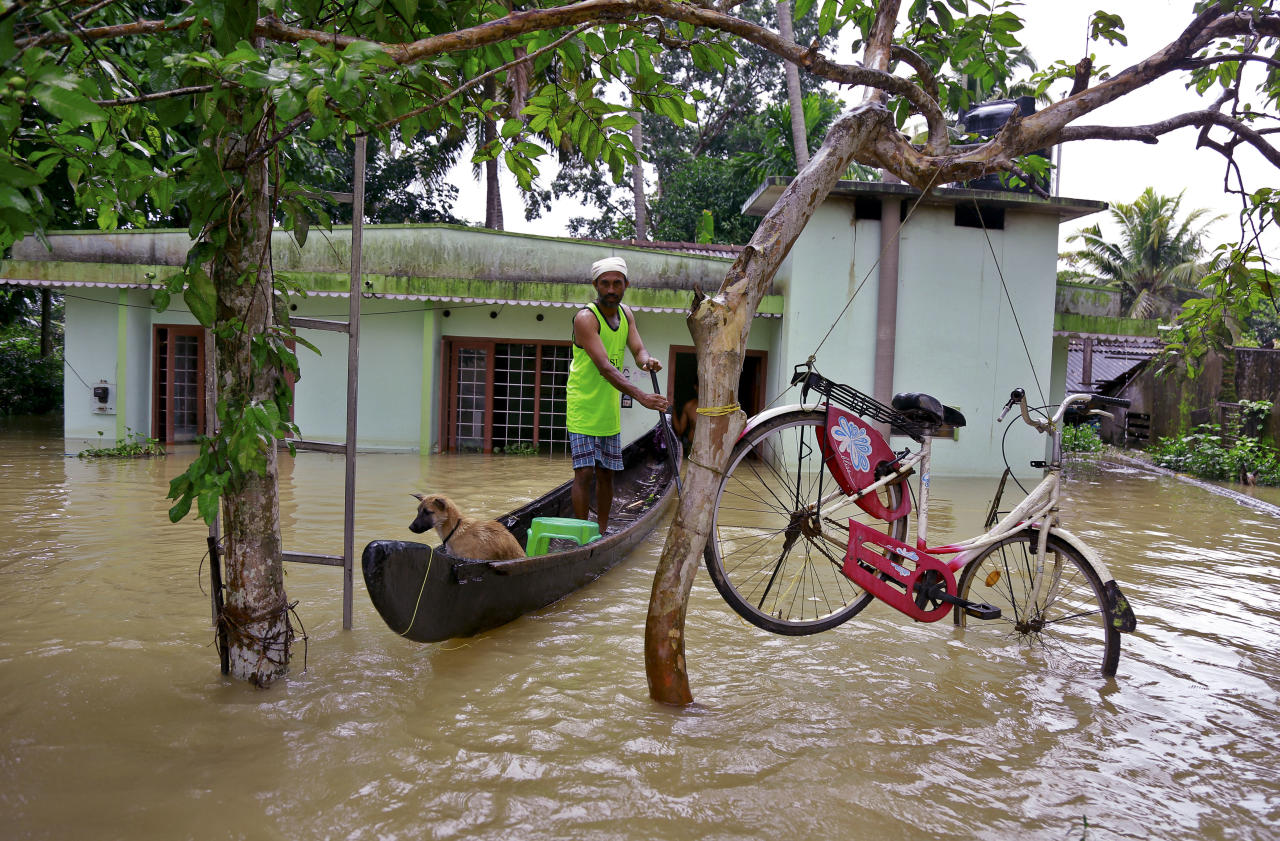 <p>A bicycle is hung from a tree branch to avoid being washed away in flood waters as a man rows with his dog in a country boat at Kuttanad in Alappuzha in the southern state of Kerala, India, Monday, Aug. 20, 2018. Kerala has been battered by torrential downpours since Aug. 8, with floods and landslides killing at least 250 people. About 800,000 people now living in some 4,000 relief camps. (AP Photo/Tibin Augustine) </p>