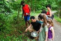 Chef Bun Lai and some friends collect cicadas in Fort Totten Park in Washington on May 23, 2021 for the purpose of cooking them