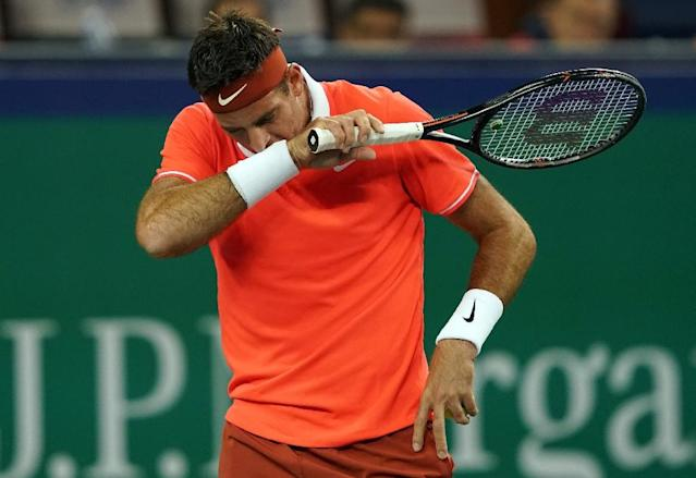 Juan Martin del Potro has fractured his knee after a heavy fall in Shanghai (AFP Photo/Johannes EISELE)