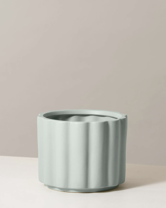 """The scalloped edges make this offering from The Sill pop (it's available in mint, blush, or black). $39, The Sill. <a href=""""https://www.thesill.com/products/balboa-ceramic-planter?variant=30679335993449"""" rel=""""nofollow noopener"""" target=""""_blank"""" data-ylk=""""slk:Get it now!"""" class=""""link rapid-noclick-resp"""">Get it now!</a>"""
