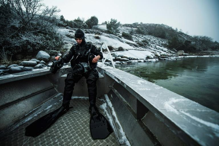 Lotta Klemming, 31, dives off Sweden's west coast for wild oysters