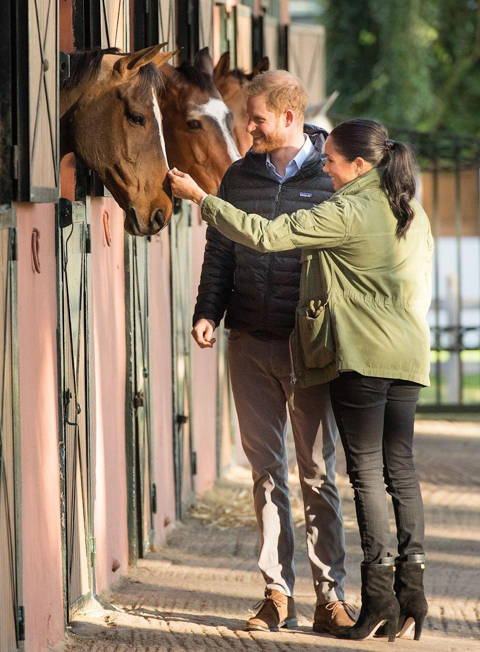 <p>Harry and Meghan pet horses during a visit to the Moroccan Royal Federation of Equestrian Sports. </p>