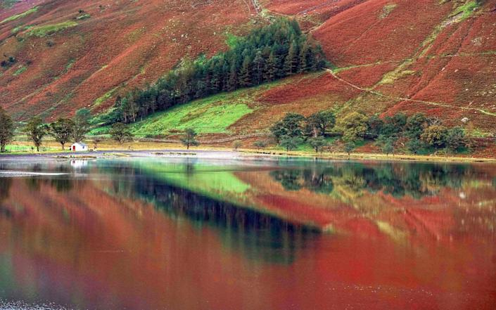 Autumn colours are reflected in the water at Buttermere in the Lake District, Cumbria - Owen Humphreys/PA